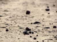 Depth of field photo of a dirt road