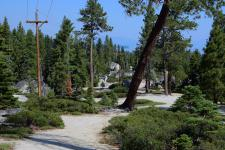 One of the many public trails/recreation areas on the west shore of Lake Tahoe