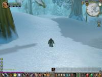 My very first screenshot of WoW ever...Foxthorn, my first character, at level 9